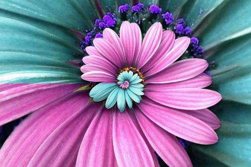Бирюзовый цвет в природе